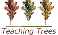 Teaching Trees
