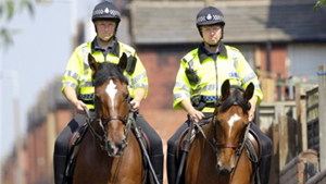 WEST YORKSHIRE POLICE HORSES