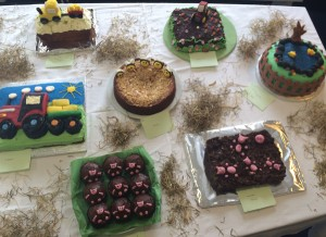 bake off cakes for web