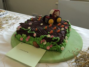winning cake by Zoe Johnson for web